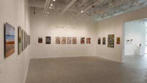 Miikanan Gallery