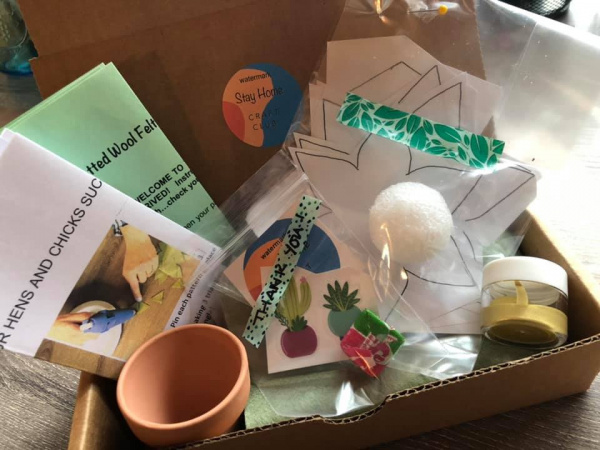 Felt Succulent Craft Kit