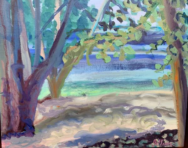 Lake Bemidji - Gillian Bedford